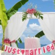 Wedding arch - tent - decorated with flowers on beach, tropical — Stock Photo #55275085