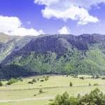 Beautiful view of alpine meadows. Upper Svaneti, Georgia, Europe — Stock Photo #55276477