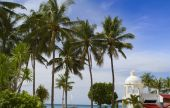 Tropical resort with palm trees and blue sky — Foto Stock