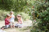 Three happy children enjoying their time outdoors — Stockfoto