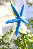 Wedding decoration starfish, tropical wedding ceremony details — Stock Photo