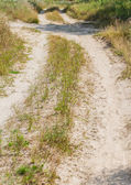 Crossing of several rural countryside dirty roads — Stockfoto