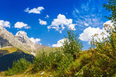 Beautiful view of alpine meadows. Upper Svaneti, Georgia, Europe — Foto de Stock
