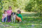 Three kids - boy and girl - with dog outdoors — Stock Photo