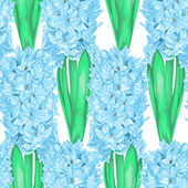 Beautiful seamless background with hyacinth. — Stock Vector