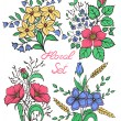 Vector flowers set. Colorful floral collection with leaves and flowers — Stock Vector #59669813
