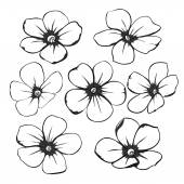 Beautiful monochrome black and white floral collection with leaves and flowers. — Stock Vector