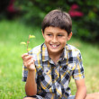 Young boy with flower — Stock Photo #52316683
