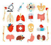 Stock vector medicine anatomy flat icon set — Vetor de Stock