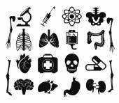 Vector set of internal human organs icons — Stockvector