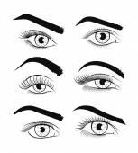 Vector template eyes. Vector illustration — Stock Vector