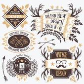 Stylish vintage badges, labels and ribbons set 7 — Stock Vector