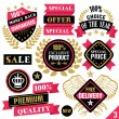 Premium quality stickers, badges, labels and ribbons. Set 3 — Stock Vector #74780031