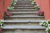 Květiny na okněblommor på trappan — Stock fotografie