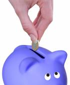 Euro and  piggy bank — Stock Photo
