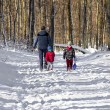 Family in the snow in the forest — Stock Photo #63831473