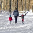 Family in the snow  — Stock Photo #63831483