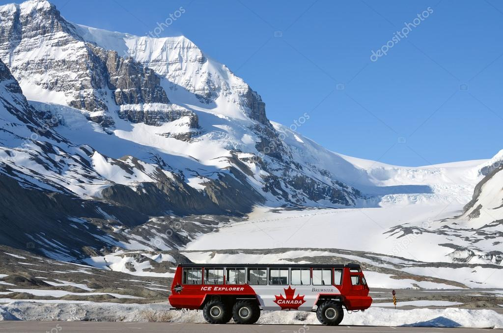 Icefield Discovery Tours