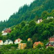 Houses on hills in city Bergen, Norway — Stock Photo #52413101