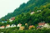 Houses on hills in city Bergen, Norway — Stock Photo