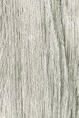 Closeup of paint wood. Gray wooden plank as background texture. — Stock Photo