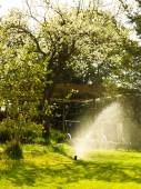 Gardening. Lawn sprinkler spraying water over grass. — Stock Photo