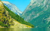 Tourism and travel. Mountains and fjord in Norway. — 图库照片