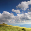 Nature. Field mountain landscape in the summer — Stock Photo #53007411