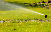 Gardening. Lawn sprinkler spraying water over grass. — Φωτογραφία Αρχείου