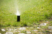Gardening. Lawn sprinkler spraying water over grass. — Стоковое фото