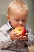 Little boy child kid eating apple fruit at home — Stock Photo