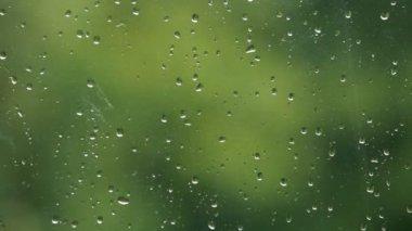 Window with rain drops — Stock Video