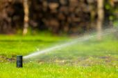 Lawn sprinkler spraying water over grass — Photo