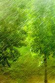 Rainy outside window — Foto Stock