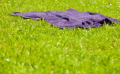 Violet blanket on the grass — Stock Photo