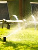 Sprinkler spraying water over grass — Stock Photo