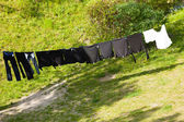Clean laundry hanging to dry — Stock Photo