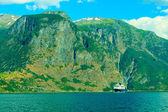 Kreuzfahrtschiff auf dem fjord — Stockfoto