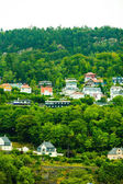 Houses on hills — Foto Stock