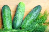 Bunch fresh dill and cucumbers — Стоковое фото