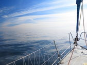 Sailboat sailing in blue sea — Stock Photo