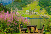 Picnic table and benches near lake in Norway, Europe. — Stock Photo
