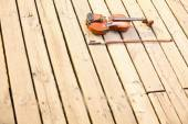 Violin on wooden pier — Stock Photo