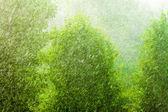 Water drops on glass windowpane — Stock Photo