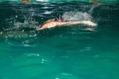 Žena, plavání v bazénu. — Stock fotografie