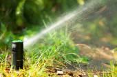 Aspersor de gramado pulverizando água — Fotografia Stock