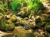 Stream in gdansk oliva park. — Stock Photo