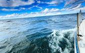 Yacht in baltic sea — 图库照片