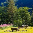 Picnic table and benches in Norway, Europe. — Stock Photo #69564065