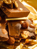 Different sorts chocolate and hazelnuts — Stock Photo